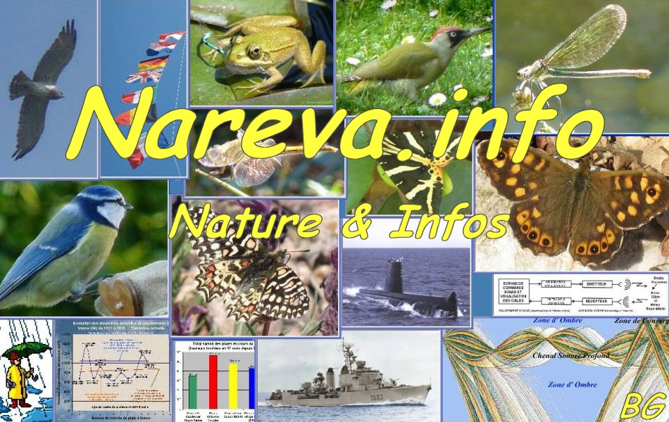 Click on this image to enter NAREVA NATURE web site